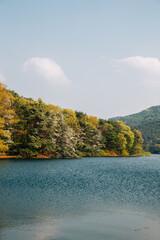 Geumgwang Lake with trees in Anseong, Korea