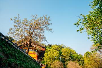 Seoknamsa temple with green trees in Anseong, Korea