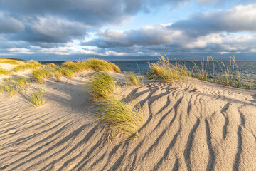 Wall Mural - Sand dunes at the beach, North Sea, Germany