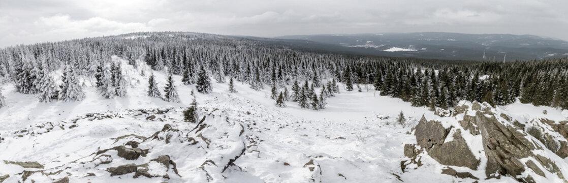 Winter im Harz Panorama, Wolfswarte im Schnee