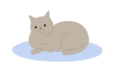 Cute cartoon gray cat lying on carpet vector flat illustration. Adorable domestic animal relaxing on floor isolated on white background. Funny pet colorful furry friend with tail
