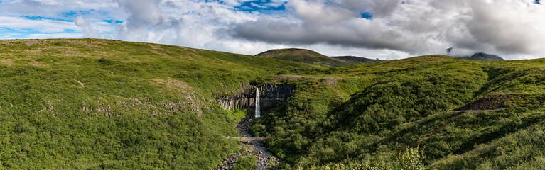 Svartifoss waterfall surrounded by basalt columns (Iceland)