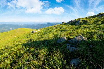 row of huge rocks on a grassy hill. lovely summer scenery of Carpathian mountains. clouds on the blue sky. explore the world concept