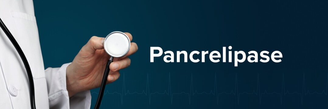 Pancrelipase. Doctor in smock holds stethoscope. The word Pancrelipase is next to it. Symbol of medicine, illness, health