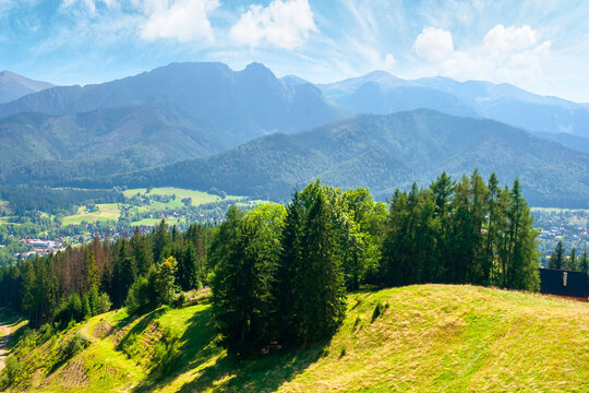zakopane summer landscape. beautiful view from gubalowka in to the distant tatra  mountains. popular travel destination of poland. sunny weather with puffy clouds above the magnificent ridge