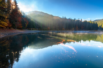 synevyr lake at foggy sunrise. misty mountain landscape in autumn. forest reflecting in the water. morning in fall season. trees in colorful foliage
