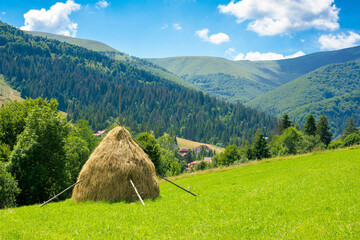 Wall Mural - summer landscape of rural valley. Stack of hay on a green meadow in the mountains in the morning under a blue summer sky