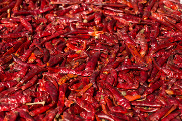 Hot red chilli peppers sun-drying. Full frame spicy food background