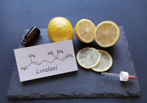 Structural chemical formula of linalool with fresh citrus fruits and a cosmetic glass bottle. Linalool is an aromatic terpene, the major component of essential oils, used in floral fragrances.