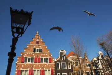 Fototapeta Glimpse of the  typical duch inclined houses in the center of Amsterdam, the most touristic city of Netherlands, in the foreground a street lamp and two seagulls flying. obraz