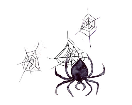 Hand-drawn watercolor illustration. A black spider is descending its web upside down. The attribute of the celebration of Halloween. Isolated on a white background.