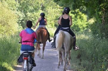 horses and bike, Bretagne, France
