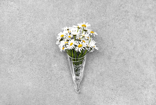 Daisies in glass cone on concrete background.