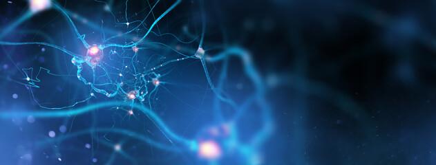 Fototapeta Neurons and nervous system. Nerve cells background with copy space (3d microbiology render banner) obraz