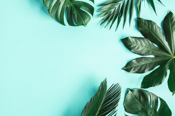 Summer composition. Tropical leaves on blue background. Summer concept. Flat lay, top view, copy space
