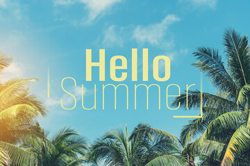 Wall Mural - Hello summer words on tropical palm tree background. Summer vacation and travel holiday concept.