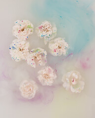 White roses floating in water and watercolor paint
