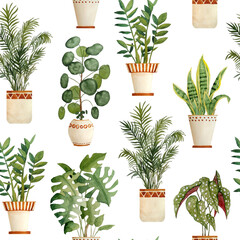 Watercolor hand drawn seamless pattern illustration with houseplants in brown clay terra cotta pots. Potted snake plant sanseviera, monstera, pilea money plant, Zamioculcas zz tree. Flowerpots