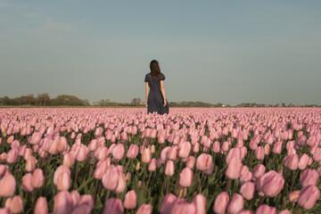 Woman in blue dress standing alone in field of pink tulips