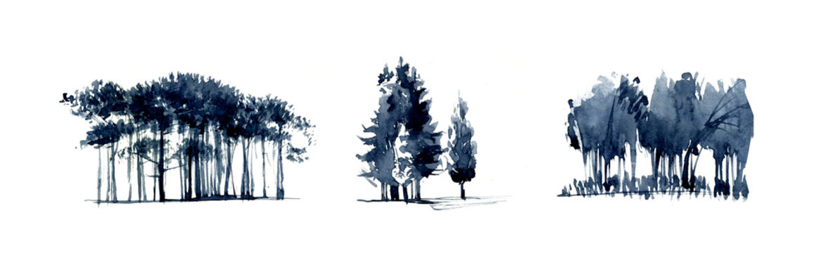 Group of trees silouette realistic illustration isolated on white.Set of realistic trees illustration isolated on white