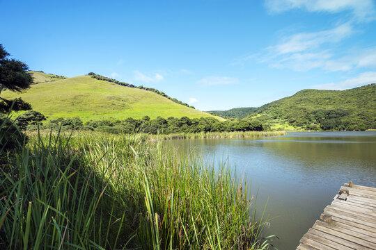 Peaceful Place and Calm Water at Waimanu Lake Bethells Beach Auckland New Zealand