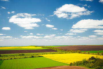 Wall Mural - Picturesque rural area on the springtime and fluffy white clouds on a sunny day.