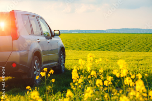 Wall mural Car parked in a green field on a country road. Beautiful spring day at countryside.