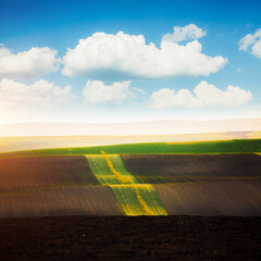 Wall Mural - Fantastic sunlight on the wavy fields of agricultural area. Location place of South Moravia region, Czech Republic.