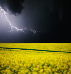 Wall Mural - Ominous storm clouds are highlighted by lightning over field. Rural area in springtime.
