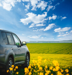 Wall Mural - Car parked in a green field on a country road. Beautiful spring day at countryside.