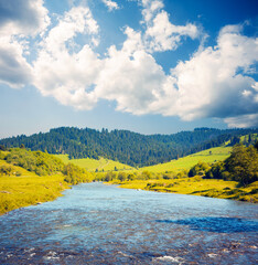 Wall Mural - Attractive view of the mountain river on a sunny day. Location place of Carpathian mountains, Ukraine.