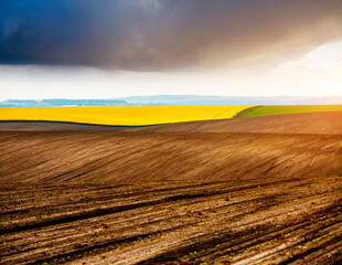 Wall Mural - Picturesque rural area and plowed field on the springtime. Location place of Ukrainian agrarian region, Europe.