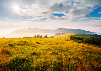 壁紙(ウォールミューラル) - Idyllic sunny day in tranquil mountain landscape. Location place of Carpathian mountains.