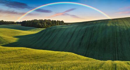Scenic view of rainbow over green field Fotobehang