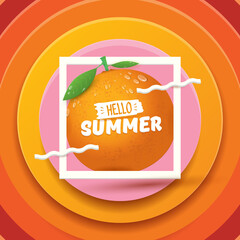 Vector Hello Summer label or flyer Design template with fresh orange fruit isolated on abstract background. Hello summer concept label or poster with fruit and letternig text