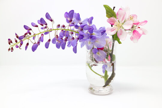 Purple wisteria flower and cherry blossoms in a glass pot isolated on white background