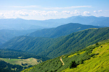 Wall Mural - summer mountain landscape. green hills rolling in to the distance. fluffy clouds on the blue sky above the valley. bright sunny day