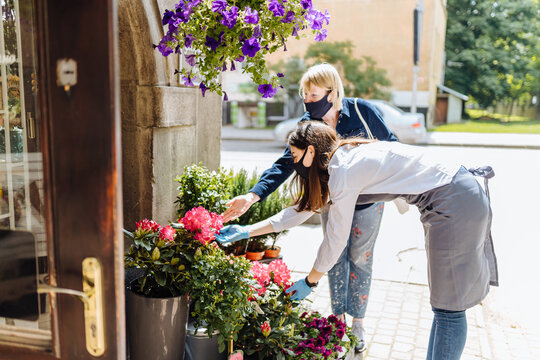 Young woman florist helping female client to choose potted plant in flower shop.Females owner of floral shop and consumer inprotective masks in faces.Lockdown, quarantine, back to normal concept