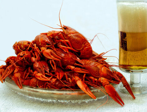 Delicious boiled river crawfish and a glass of beer on a white background. Traditional Russian snack