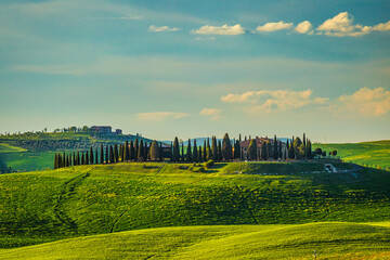 Wall Murals Melon SAN QUIRICO D'ORCIA, ITALY - MAY 2, 2019: Landscape with a cypresses and farmhouses in spring time.