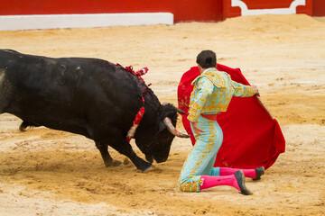Foto op Aluminium Stierenvechten Bullfighter