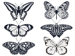 Collection of black butterfly icons with patterns. Vector illustration