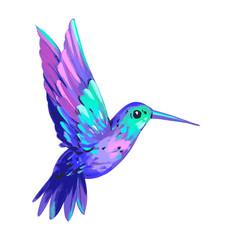 Hummingbird set. Bird illustration. Hand drawn illustration. Isolated