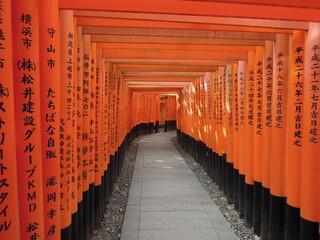 Wall Murals Kyoto 鳥居と道