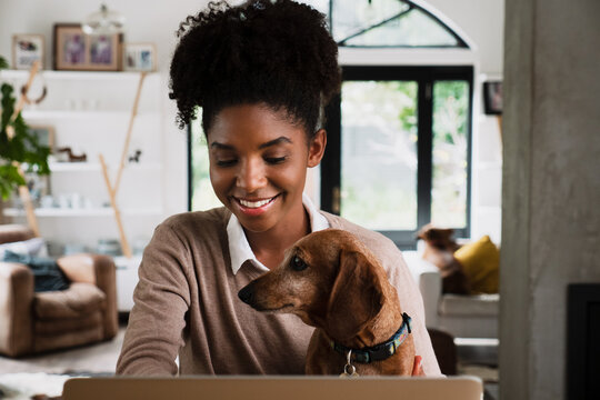 Beautiful mixed race woman working from home on her laptop with dog on her lap