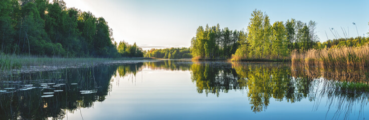 Beautiful forest lake in the evening sunlight. Panorama