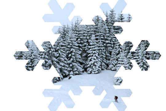 Winterwald in einem Eiskristall
