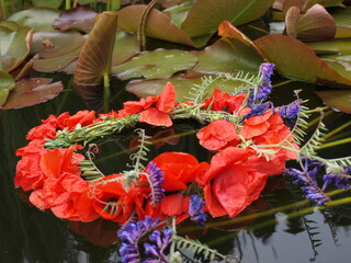 Obraz Wianek z czerwonych maków polnych pływa po wodzie - fototapety do salonu