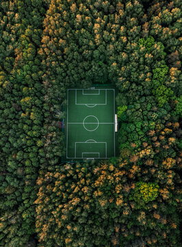 Aerial view of a soccer field in the forest