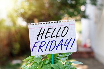 Text sign showing Hello Friday. Business photo showcasing Let the weekend begins and time to relax and celebrate Plain empty paper attached to a stick and placed in the green leafy plants Fotomurales